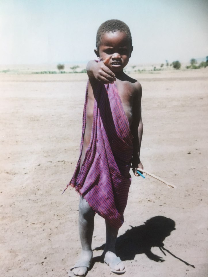 Massai boy herding cattle